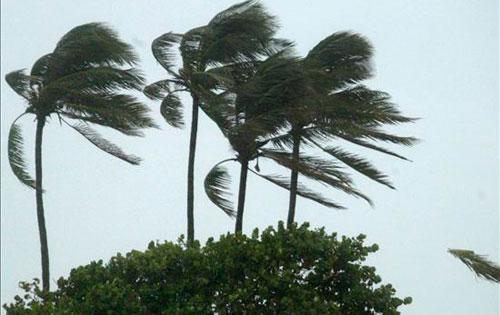 Factores que influyen en la frecuencia de ciclones tropicales