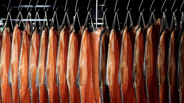 Fuerte intoxicación por salmón ahumado